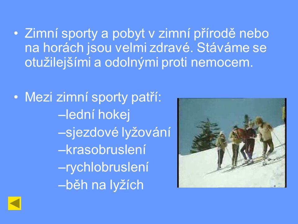 Zimní sporty a pobyt v zimní přírodě nebo na horách jsou velmi zdravé.
