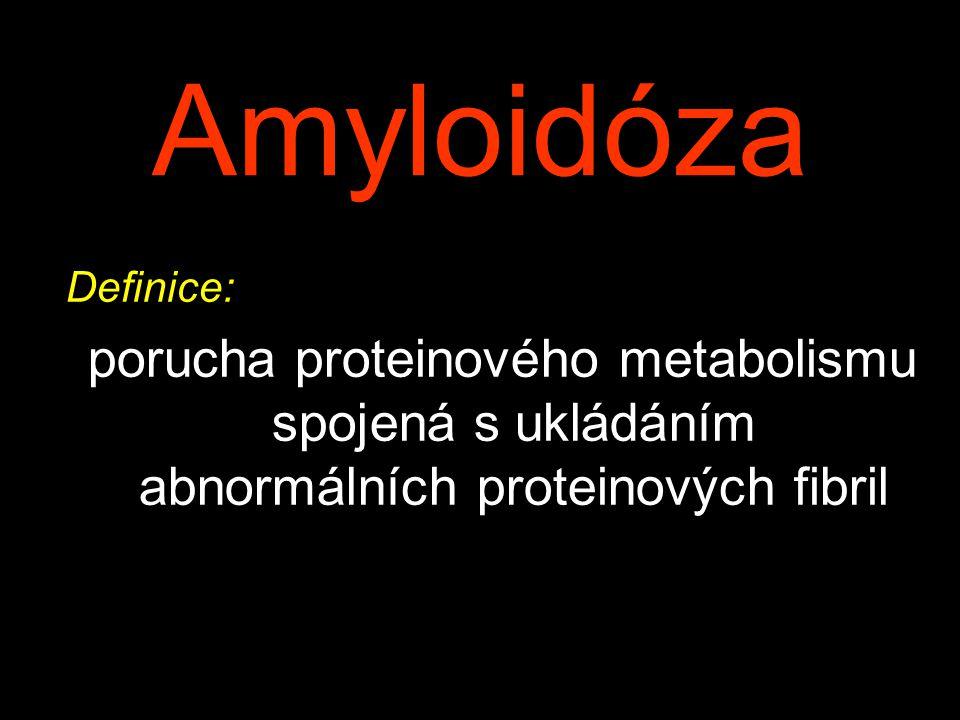 Amyloidóza Definice: porucha proteinového metabolismu spojená s ukládáním abnormálních proteinových fibril
