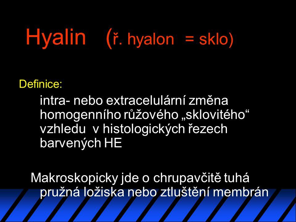 Hyalin ( ř.