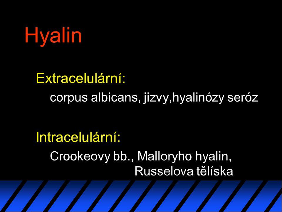 Hyalin Extracelulární: corpus albicans, jizvy,hyalinózy seróz Intracelulární: Crookeovy bb., Malloryho hyalin, Russelova tělíska