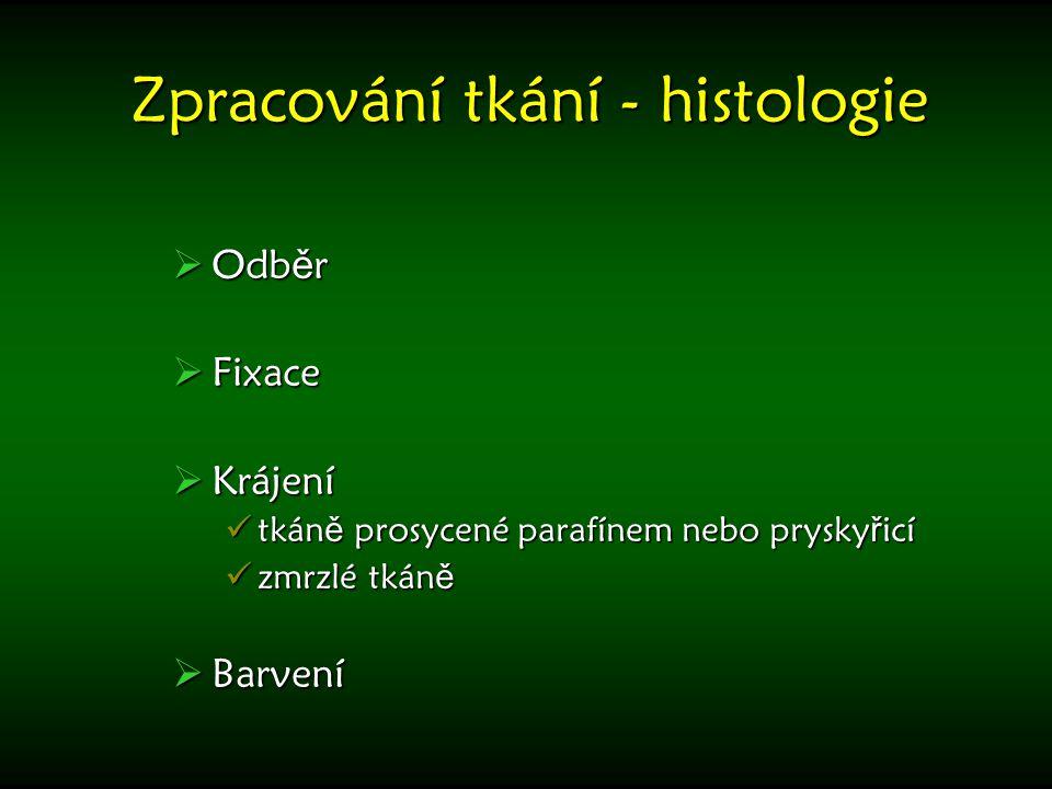 Zpracování tkání - histologie  Odb ě r  Fixace  Krájení tkán ě prosycené parafínem nebo prysky ř icí tkán ě prosycené parafínem nebo prysky ř icí z