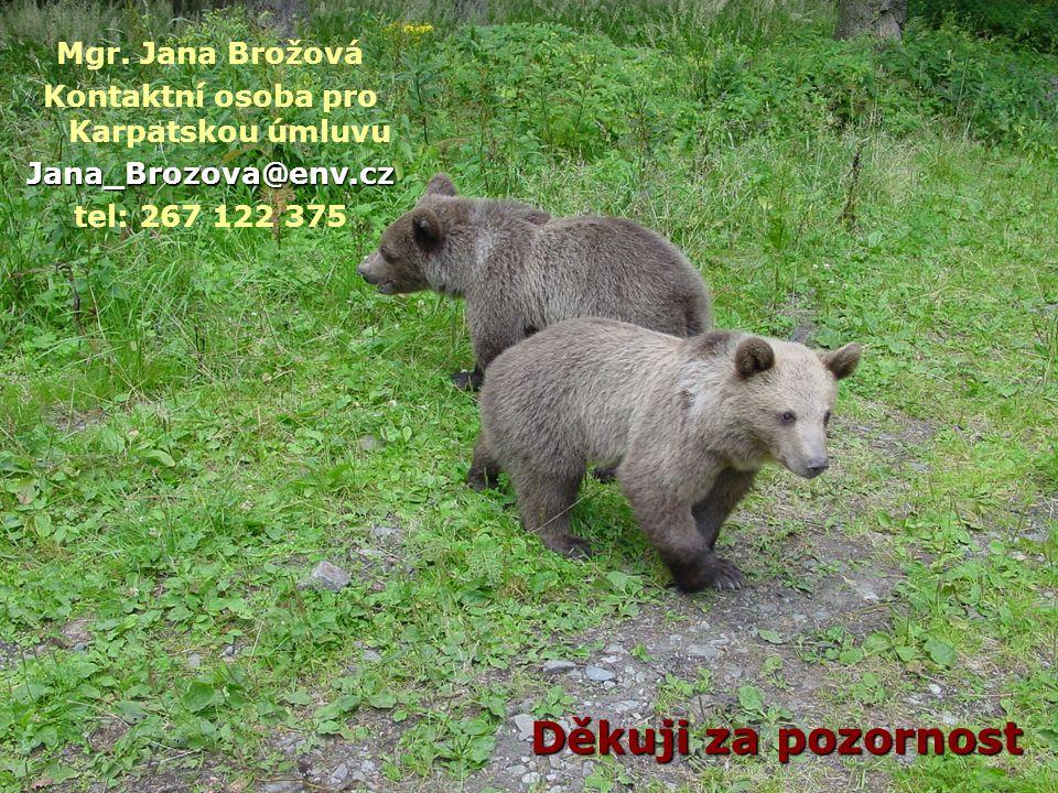 Děkuji za pozornost Mgr. Jana Brožová Kontaktní osoba pro Karpatskou úmluvuJana_Brozova@env.cz tel: 267 122 375