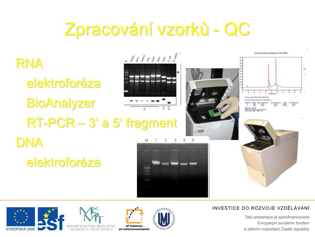 Zpracování vzorků - QC RNAelektroforézaBioAnalyzer RT-PCR – 3' a 5' fragment DNAelektroforéza