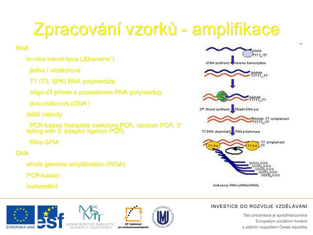 """Zpracování vzorků - amplifikace RNA in-vitro transkripce (""""Eberwine ) jedno i vícekolová T7 (T3, SP6) RNA polymeráza oligo-dT primer s promotorem RNA polymerázy dvouvláknová cDNA ."""