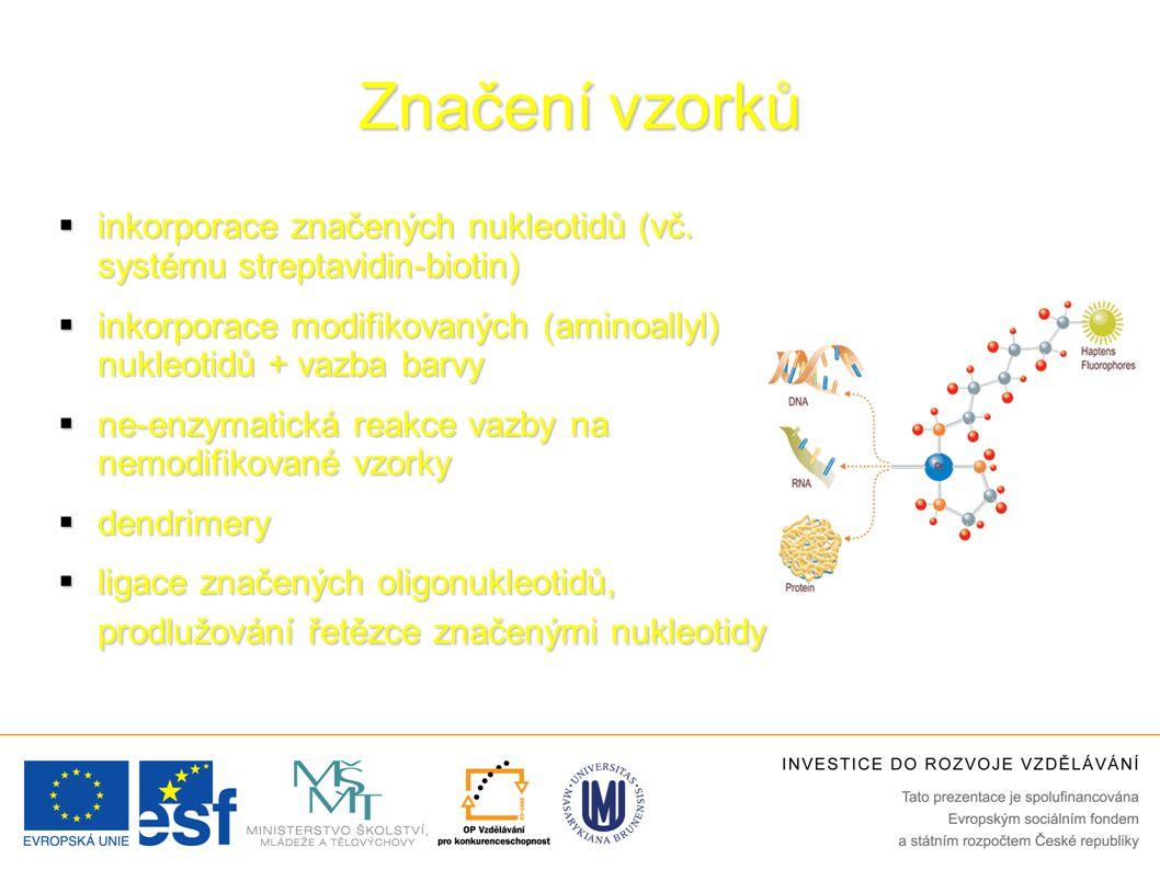 Značení vzorků  inkorporace značených nukleotidů (vč.