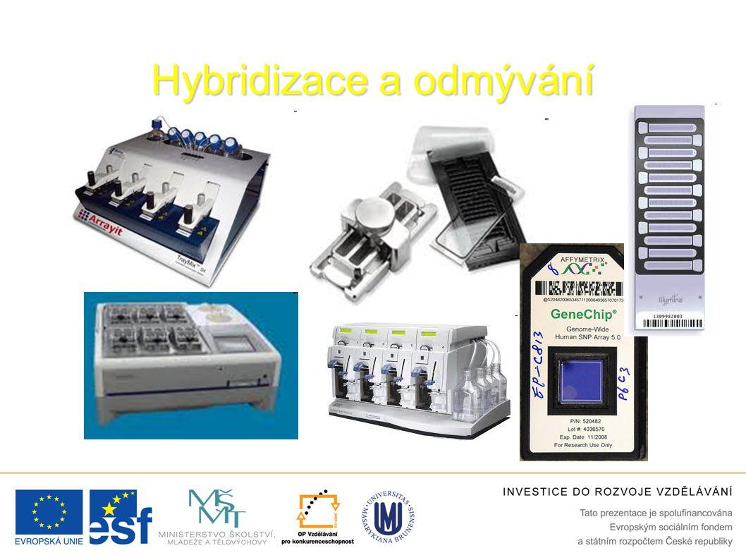 Hybridizace a odmývání