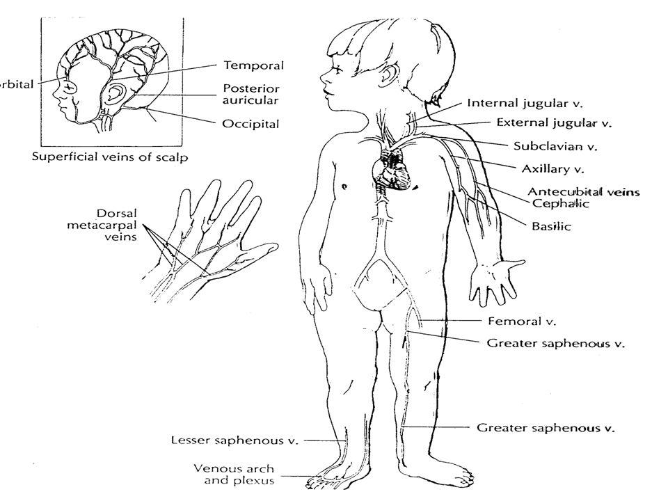 Labor.zn á mky š oku vzestup osmolarity s é ra metabolick á acidosa, hypoxie pokles natriurie ev.
