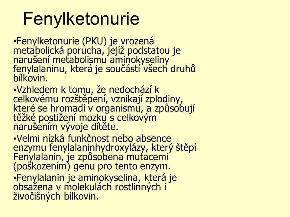 Celiakie http://www.ceskatelevize.cz/ivysilani-jako-driv/202327274210023-diagnoza/ Fenylketonurie http://www.ceskatelevize.cz/ivysilani-jako-driv/205562241500014-diagnoza/ Společnost pro výživu http://www.spolvyziva.cz Anorexie a bulimie: www.