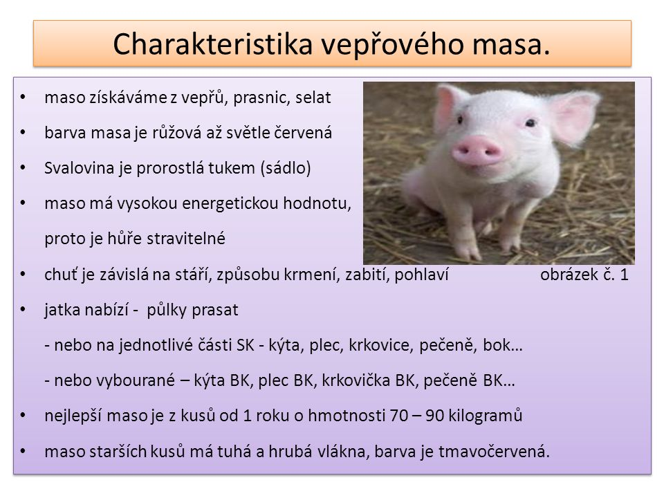 Charakteristika vepřového masa.