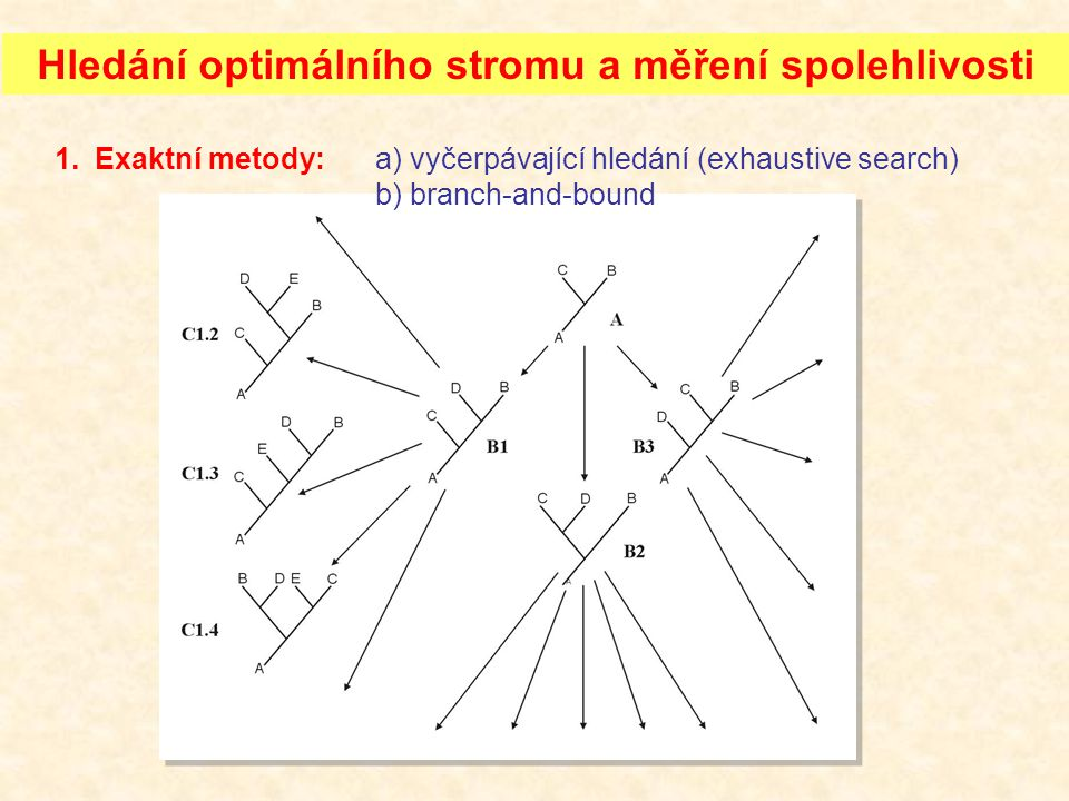 Hledání optimálního stromu a měření spolehlivosti 1.Exaktní metody:a) vyčerpávající hledání (exhaustive search) b) branch-and-bound