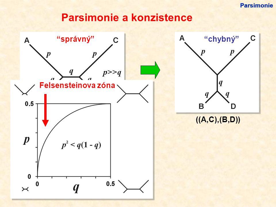 Parsimonie a konzistence ((A,B),(C,D)) p>>q správný ((A,C),(B,D)) chybný Felsensteinova zóna Parsimonie