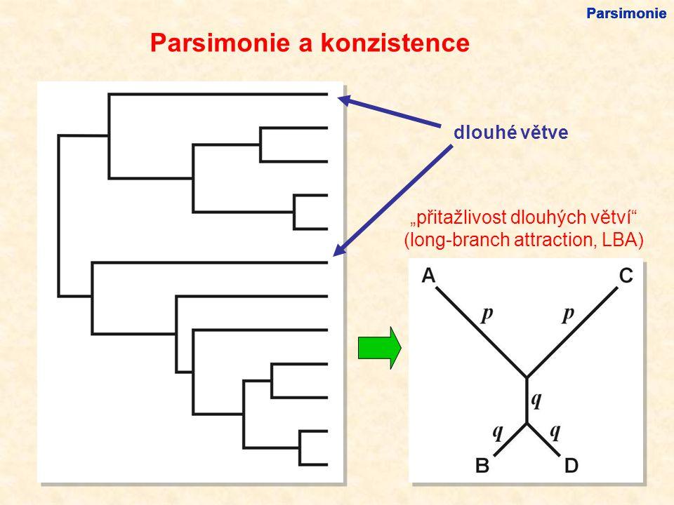 """dlouhé větve """"přitažlivost dlouhých větví (long-branch attraction, LBA) Parsimonie Parsimonie a konzistence"""