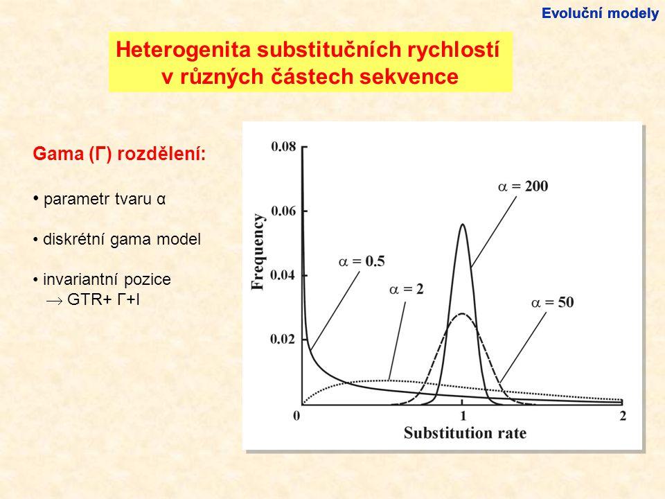 Heterogenita substitučních rychlostí v různých částech sekvence Gama (Γ) rozdělení: parametr tvaru α diskrétní gama model invariantní pozice  GTR+ Γ+I Evoluční modely