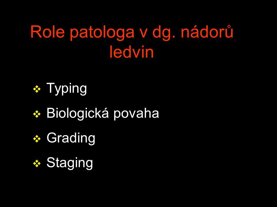 Role patologa v dg. nádorů ledvin v Typing v Biologická povaha v Grading v Staging