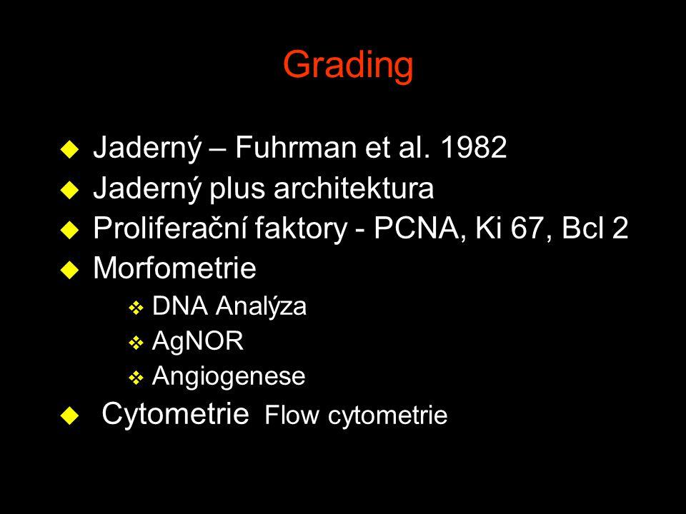 Grading u Jaderný – Fuhrman et al. 1982 u Jaderný plus architektura u Proliferační faktory - PCNA, Ki 67, Bcl 2 u Morfometrie v DNA Analýza v AgNOR v