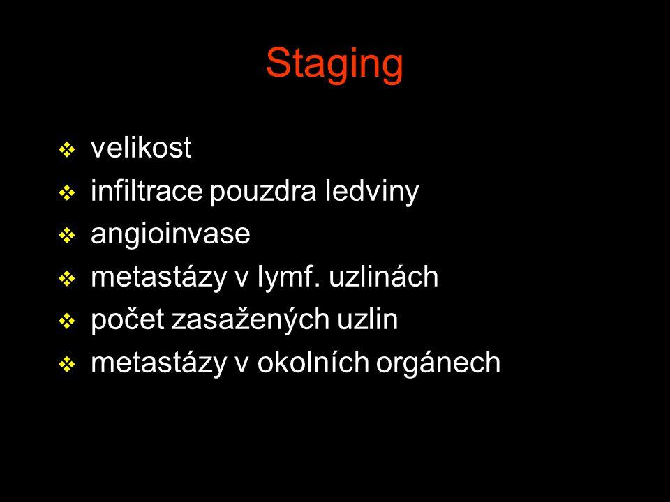Staging v velikost v infiltrace pouzdra ledviny v angioinvase v metastázy v lymf. uzlinách v počet zasažených uzlin v metastázy v okolních orgánech