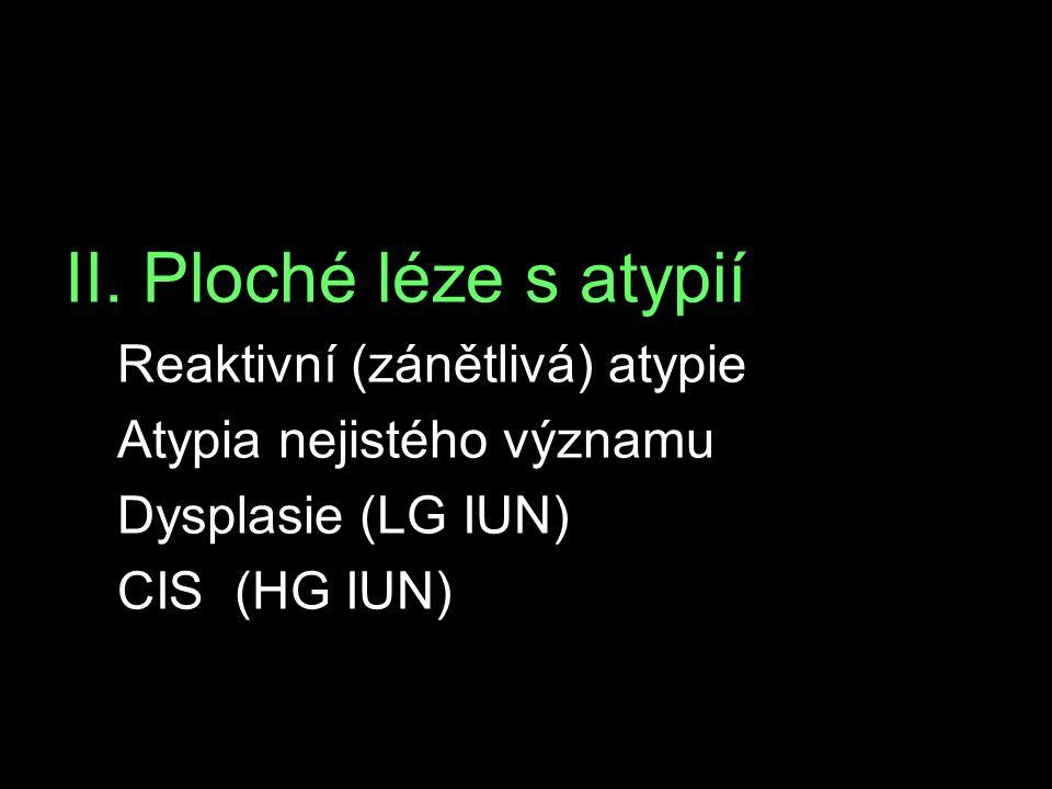 II. Ploché léze s atypií Reaktivní (zánětlivá) atypie Atypia nejistého významu Dysplasie (LG IUN) CIS (HG IUN)