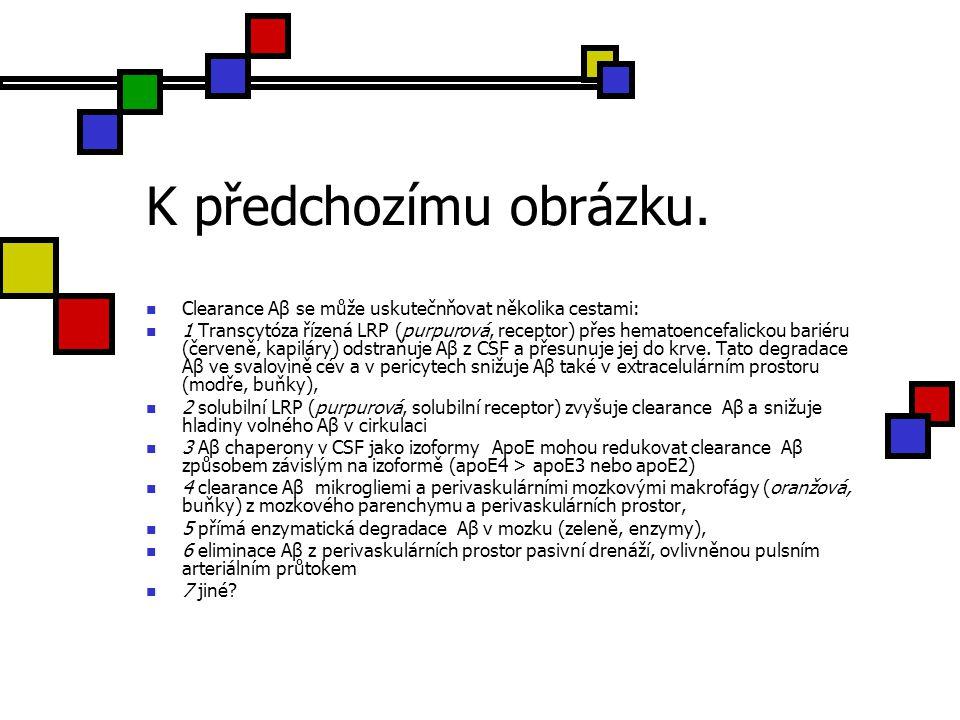 K předchozímu obrázku. Clearance Aβ se může uskutečnňovat několika cestami: 1 Transcytóza řízená LRP (purpurová, receptor) přes hematoencefalickou bar