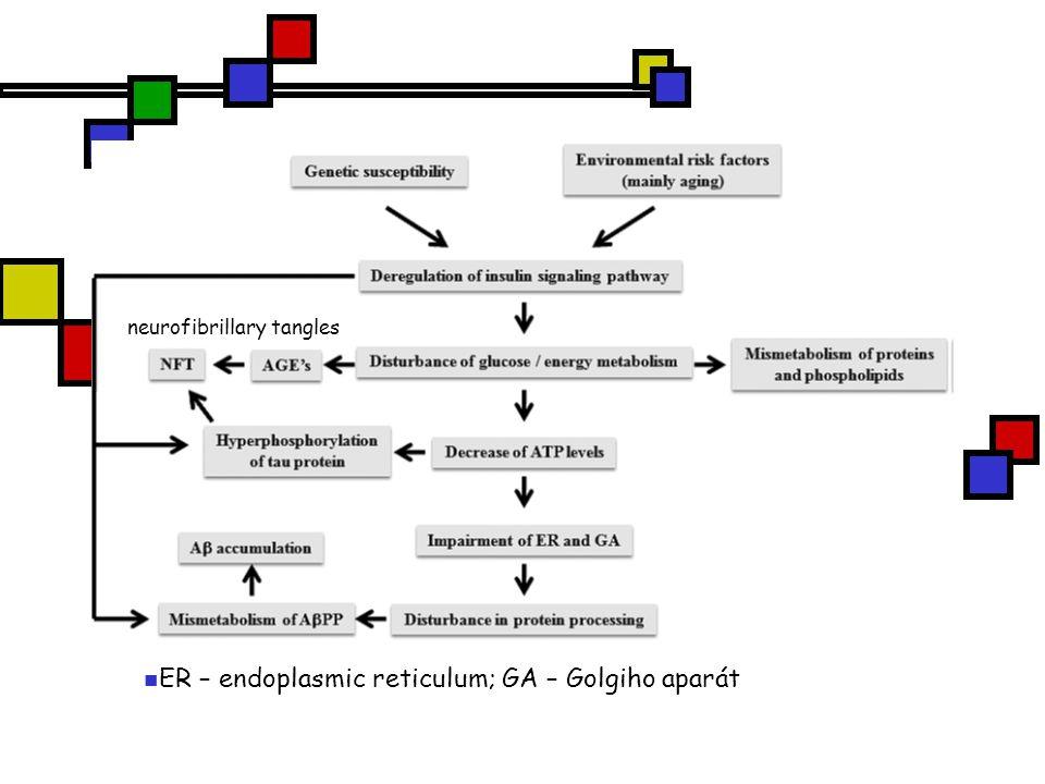ER – endoplasmic reticulum; GA – Golgiho aparát neurofibrillary tangles
