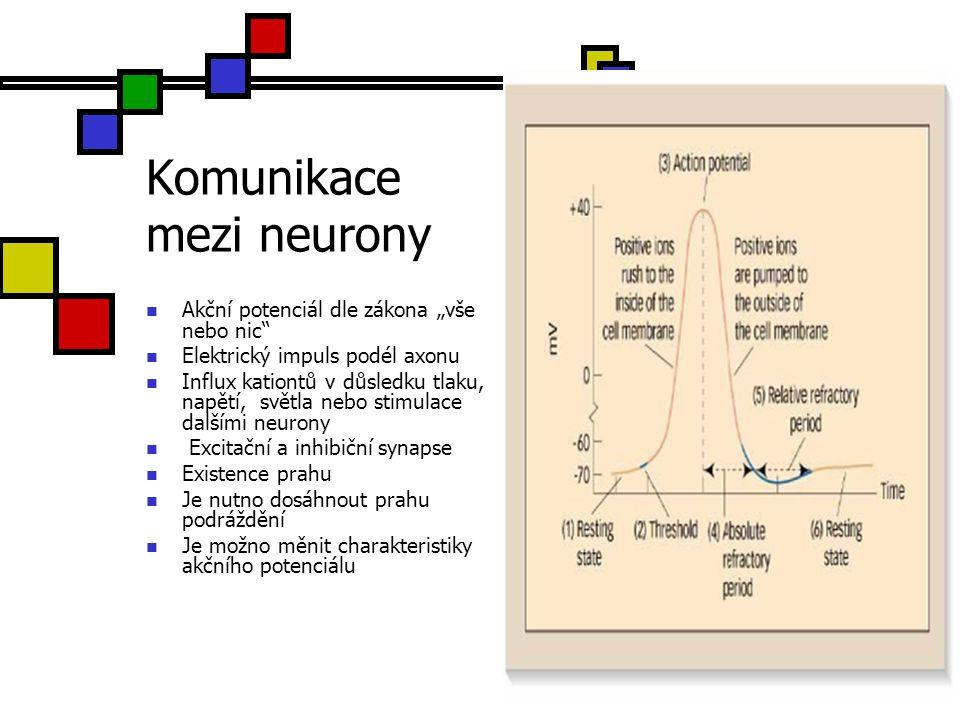 """Komunikace mezi neurony Akční potenciál dle zákona """"vše nebo nic"""" Elektrický impuls podél axonu Influx kationtů v důsledku tlaku, napětí, světla nebo"""