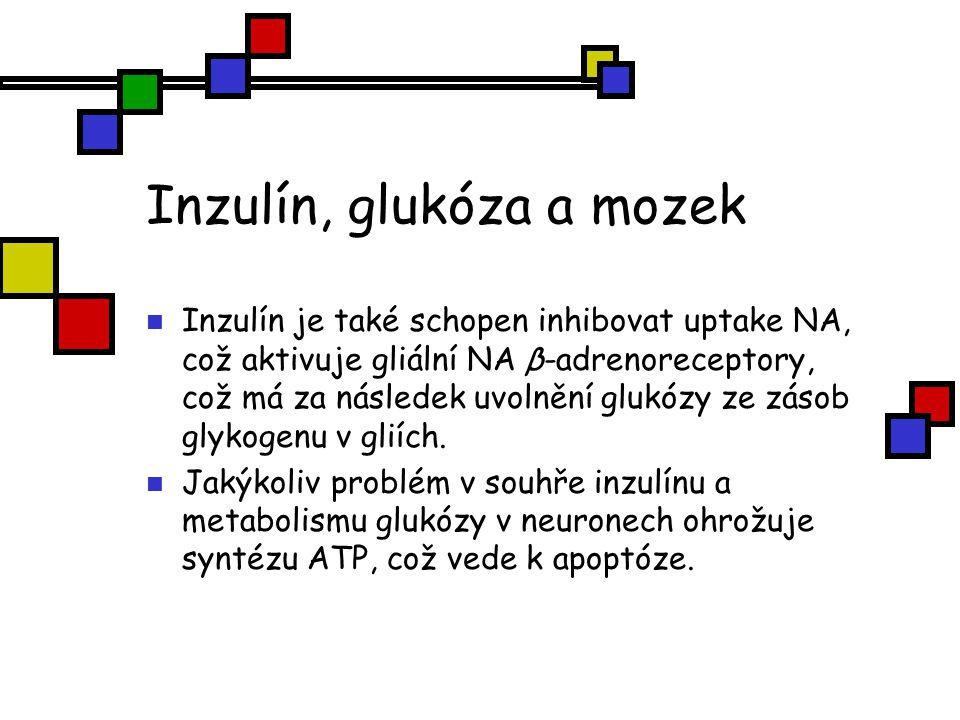 Inzulín, glukóza a mozek Inzulín je také schopen inhibovat uptake NA, což aktivuje gliální NA β-adrenoreceptory, což má za následek uvolnění glukózy z