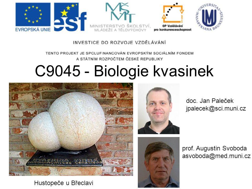 C9045 - Biologie kvasinek prof. Augustin Svoboda asvoboda@med.muni.cz doc. Jan Paleček jpalecek@sci.muni.cz Hustopeče u Břeclavi