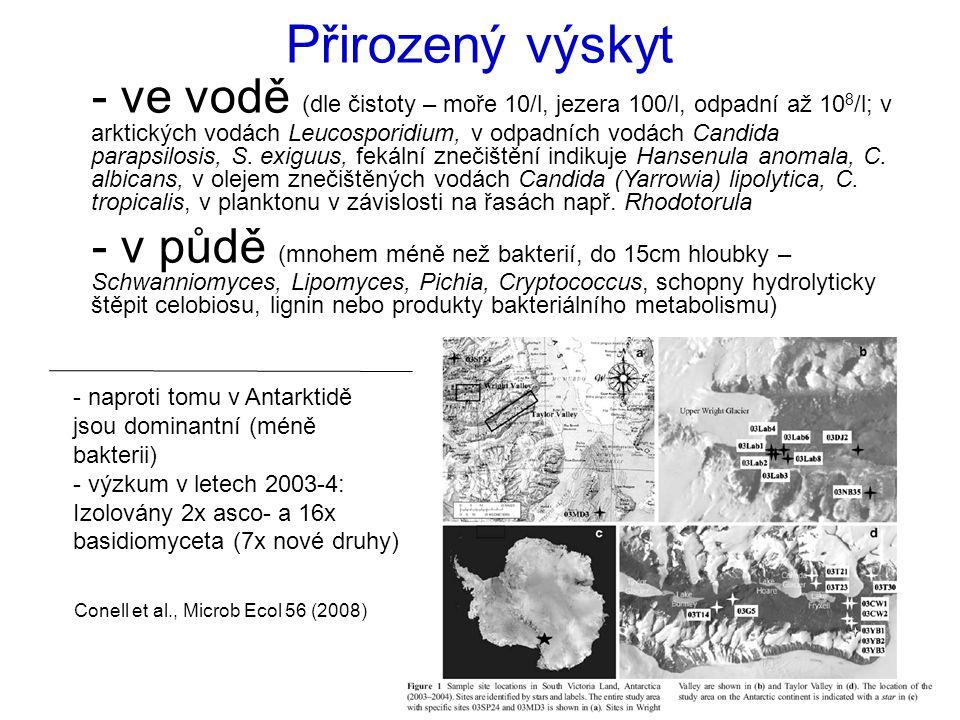 Přirozený výskyt - ve vodě (dle čistoty – moře 10/l, jezera 100/l, odpadní až 10 8 /l; v arktických vodách Leucosporidium, v odpadních vodách Candida