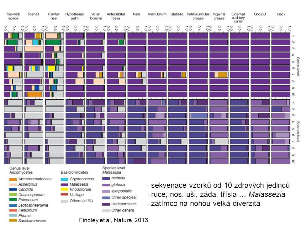 Findley et al, Nature, 2013 - sekvenace vzorků od 10 zdravých jedinců - ruce, nos, uši, záda, třísla … Malassezia - zatímco na nohou velká diverzita