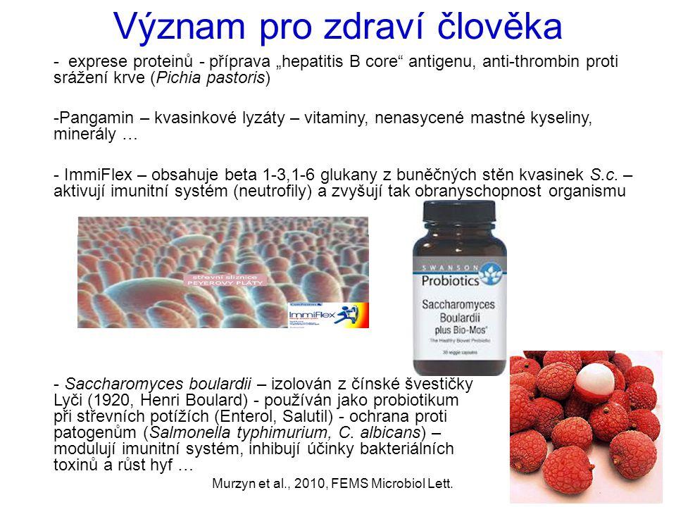 Murzyn et al., 2010, FEMS Microbiol Lett. - Saccharomyces boulardii – izolován z čínské švestičky Lyči (1920, Henri Boulard) - používán jako probiotik