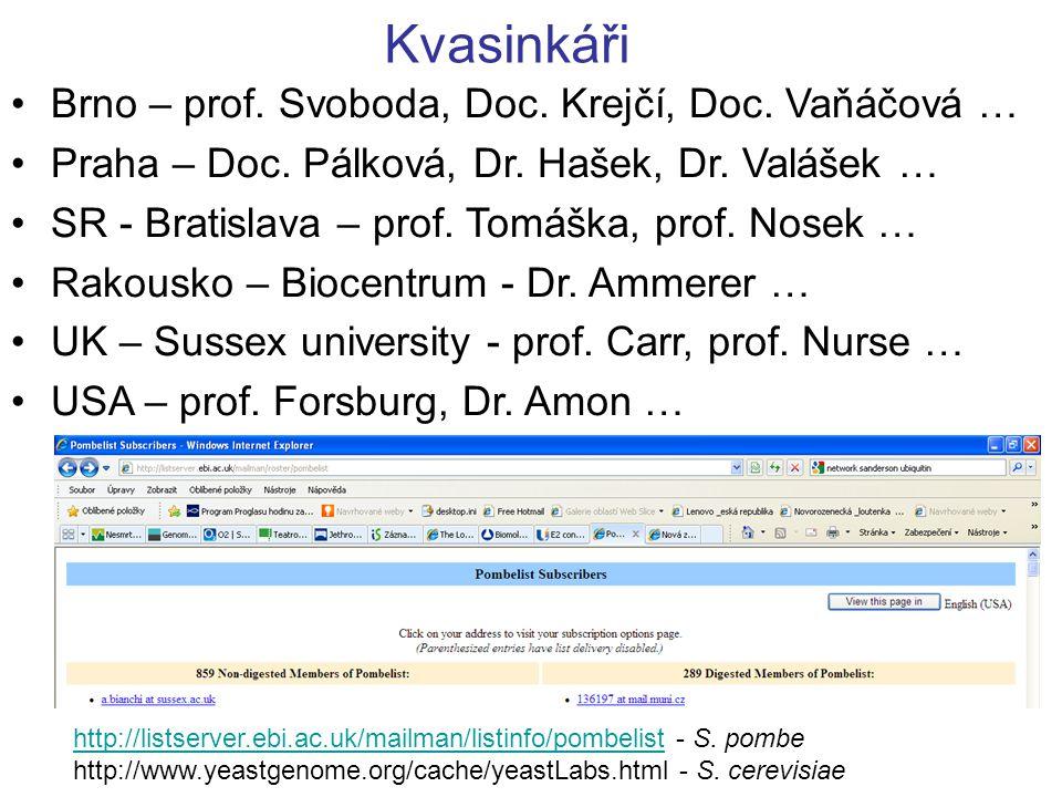 Kvasinkáři Brno – prof. Svoboda, Doc. Krejčí, Doc. Vaňáčová … Praha – Doc. Pálková, Dr. Hašek, Dr. Valášek … SR - Bratislava – prof. Tomáška, prof. No