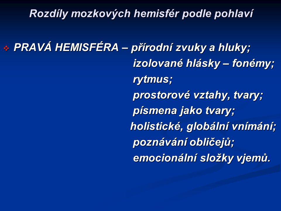 Rozdíly mozkových hemisfér podle pohlaví  PRAVÁ HEMISFÉRA – přírodní zvuky a hluky; izolované hlásky – fonémy; izolované hlásky – fonémy; rytmus; ryt