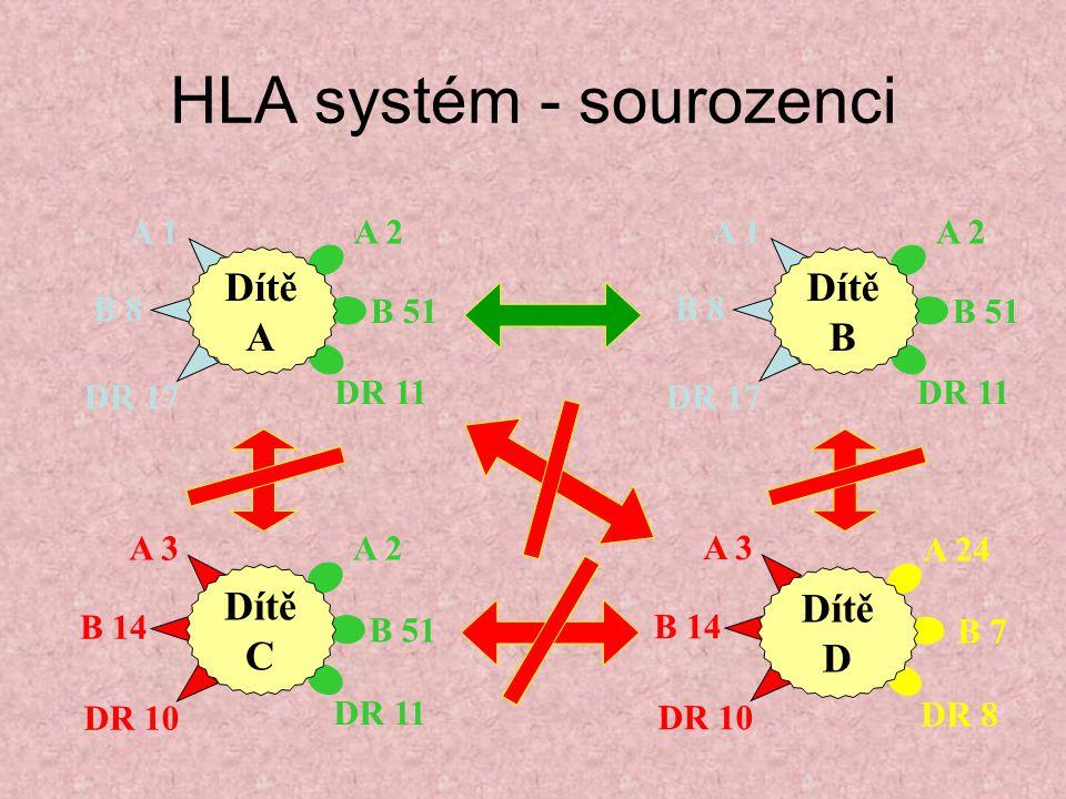 HLA systém - sourozenci A 2 B 51 DR 11 A 1 B 8 DR 17 Dítě A A 2 B 51 DR 11 A 1 B 8 DR 17 Dítě B A 2 B 51 DR 11 A 3 B 14 DR 10 Dítě C A 3 B 14 DR 10 A 24 B 7 DR 8 Dítě D