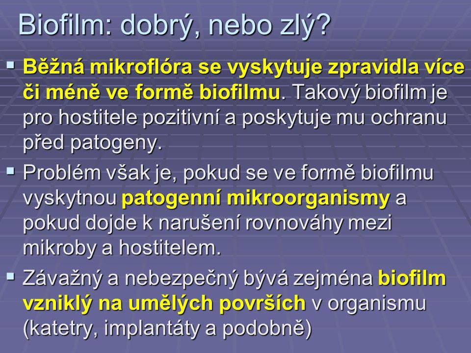 Biofilm: dobrý, nebo zlý?  Běžná mikroflóra se vyskytuje zpravidla více či méně ve formě biofilmu. Takový biofilm je pro hostitele pozitivní a poskyt