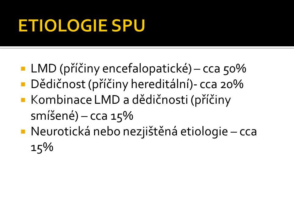  LMD (příčiny encefalopatické) – cca 50%  Dědičnost (příčiny hereditální)- cca 20%  Kombinace LMD a dědičnosti (příčiny smíšené) – cca 15%  Neurot