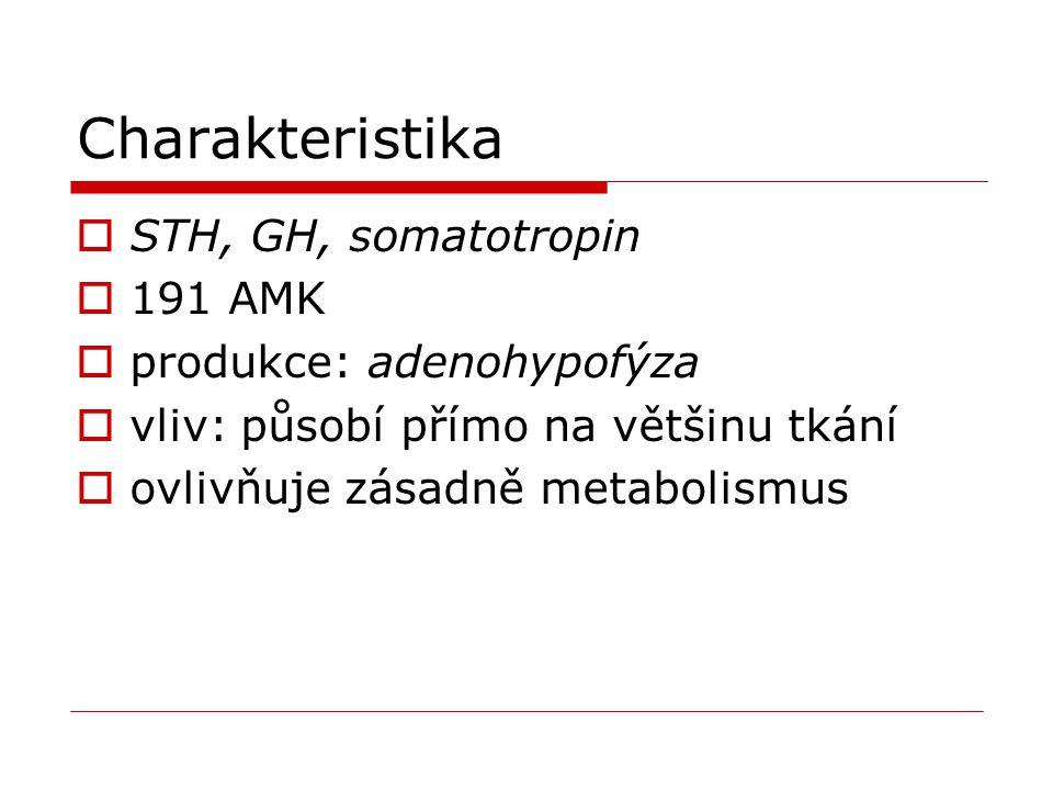 Charakteristika  STH, GH, somatotropin  191 AMK  produkce: adenohypofýza  vliv: působí přímo na většinu tkání  ovlivňuje zásadně metabolismus