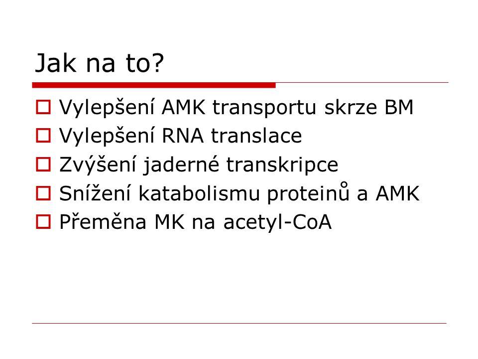 Jak na to?  Vylepšení AMK transportu skrze BM  Vylepšení RNA translace  Zvýšení jaderné transkripce  Snížení katabolismu proteinů a AMK  Přeměna