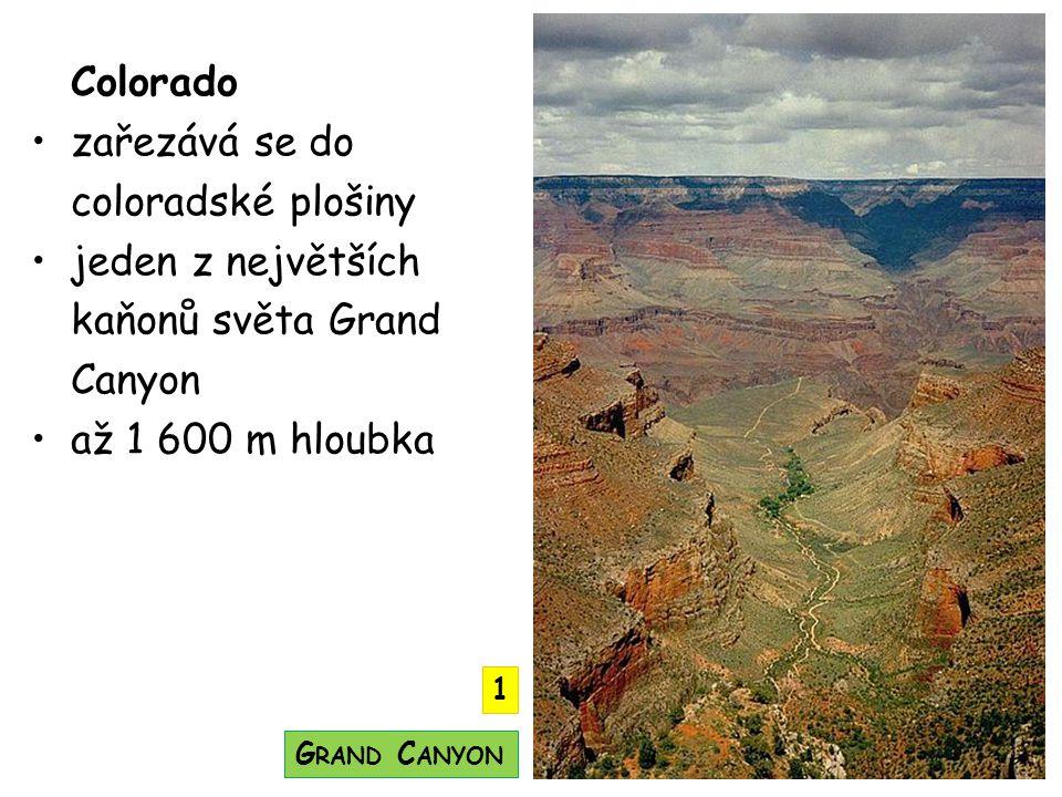 Colorado zařezává se do coloradské plošiny jeden z největších kaňonů světa Grand Canyon až 1 600 m hloubka G RAND C ANYON 1