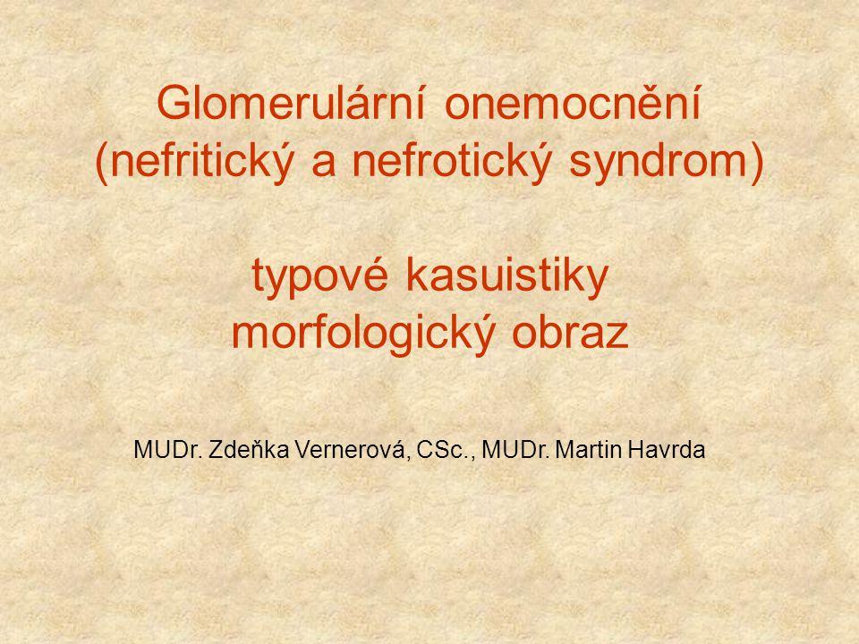 Glomerulární onemocnění (nefritický a nefrotický syndrom) typové kasuistiky morfologický obraz MUDr. Zdeňka Vernerová, CSc., MUDr. Martin Havrda