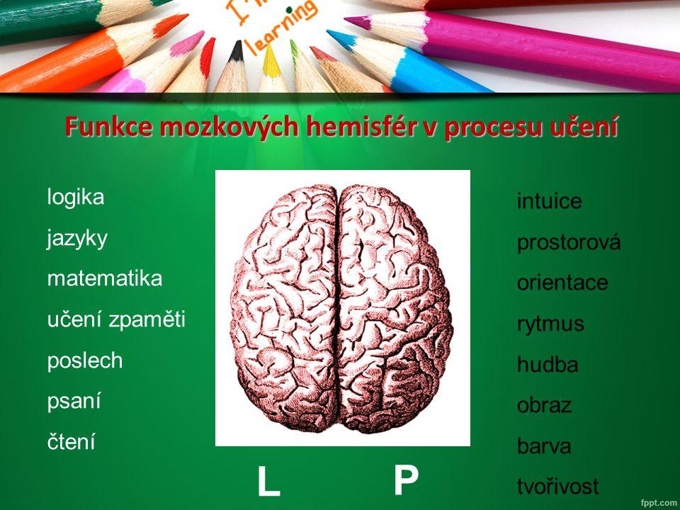 Funkce mozkových hemisfér v procesu učení logika jazyky matematika učení zpaměti poslech psaní čtení intuice prostorová orientace rytmus hudba obraz b
