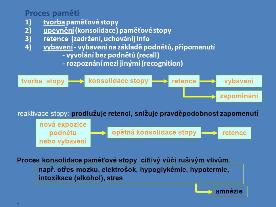 Proces paměti 1)tvorba paměťové stopy 2)upevnění (konsolidace) paměťové stopy 3)retence (zadržení, uchování) info 4)vybavení - vybavení na základě pod