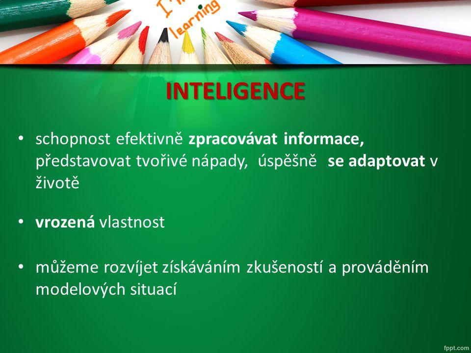 Model inteligence R.B.
