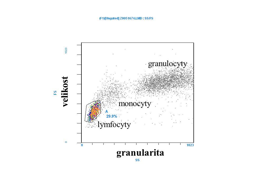 lymfocyty monocyty granulocyty granularita velikost
