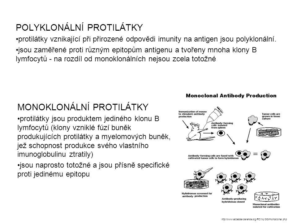 POLYKLONÁLNÍ PROTILÁTKY protilátky vznikající při přirozené odpovědi imunity na antigen jsou polyklonální. jsou zaměřené proti různým epitopům antigen