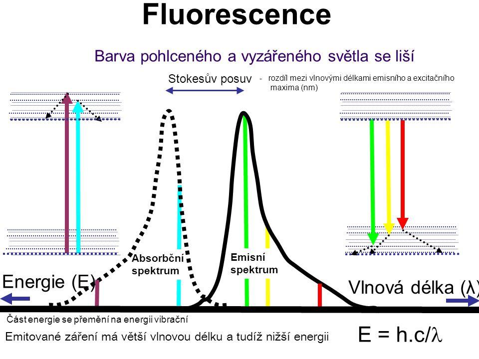 Emisní spektrum Absorbční spektrum Barva pohlceného a vyzářeného světla se liší Vlnová délka (λ) Stokesův posuv Energie (E) Fluorescence E = h.c/ Emit