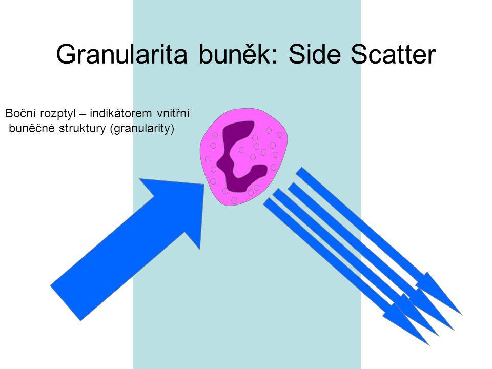 Granularita buněk: Side Scatter Boční rozptyl – indikátorem vnitřní buněčné struktury (granularity)