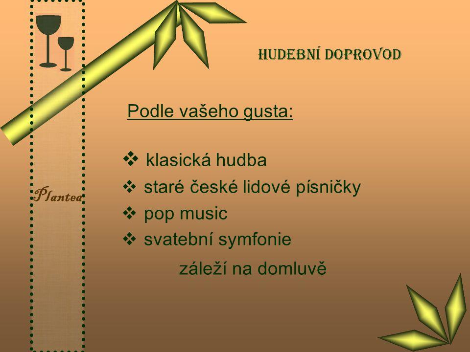 Plantea Hudební doprovod Podle vašeho gusta:  klasická hudba  staré české lidové písničky  pop music  svatební symfonie záleží na domluvě