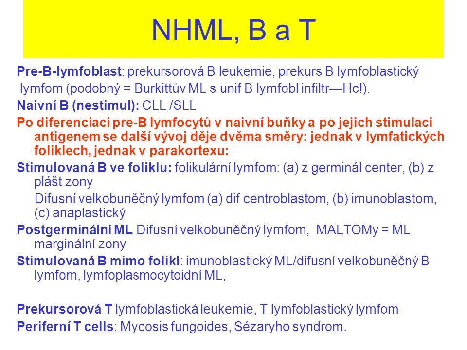 NHML, B a T Pre-B-lymfoblast: prekursorová B leukemie, prekurs B lymfoblastický lymfom (podobný = Burkittův ML s unif B lymfobl infiltr—Hc!).