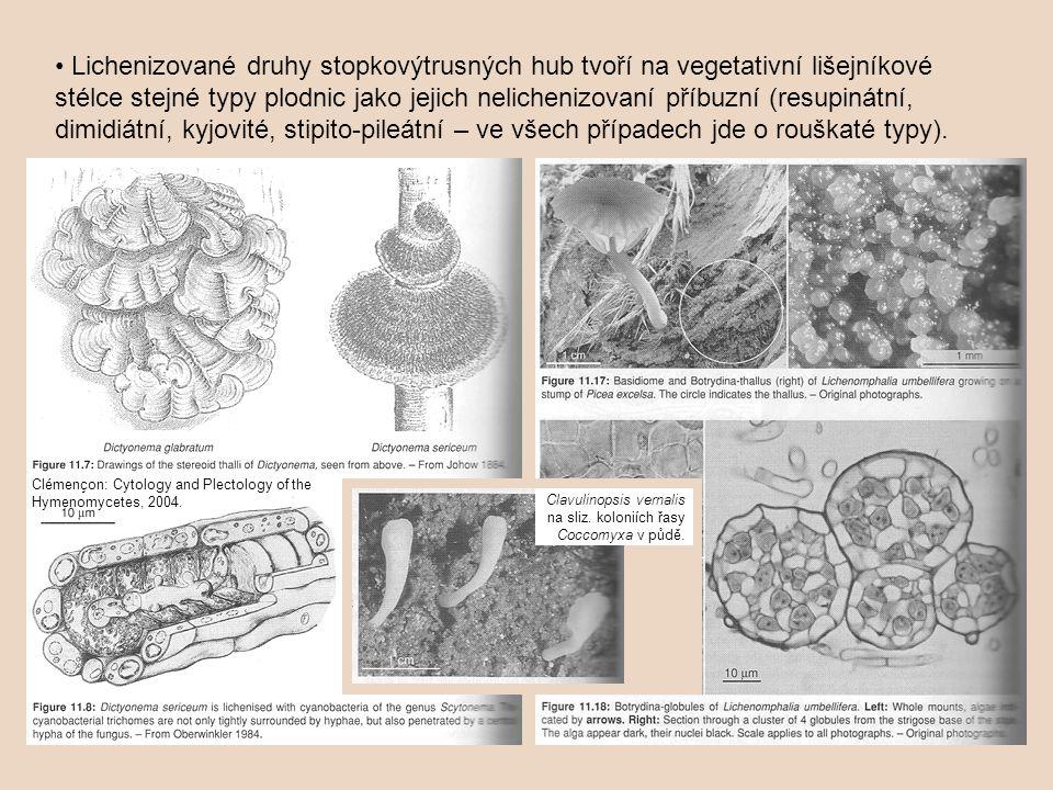 Lichenizované druhy stopkovýtrusných hub tvoří na vegetativní lišejníkové stélce stejné typy plodnic jako jejich nelichenizovaní příbuzní (resupinátní