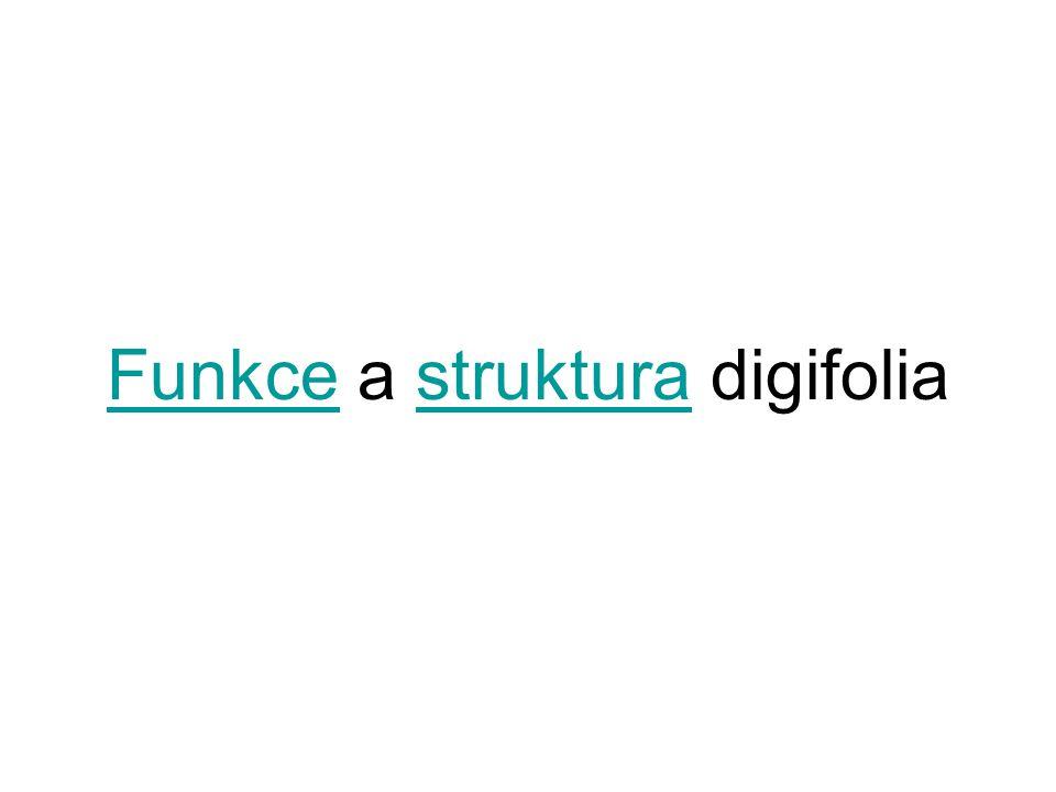 FunkceFunkce a struktura digifoliastruktura