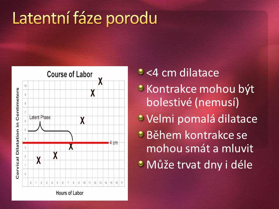<4 cm dilatace Kontrakce mohou být bolestivé (nemusí) Velmi pomalá dilatace Během kontrakce se mohou smát a mluvit Může trvat dny i déle